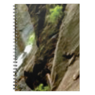 gray face of rock notebook