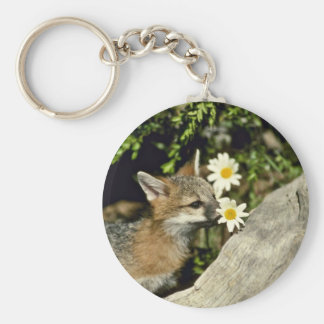 Gray Fox-young kit sniffing/eating flower Keychain