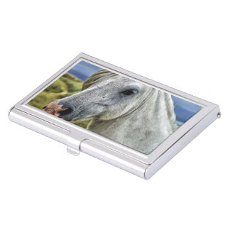 Gray Horse Face Business Card Holder