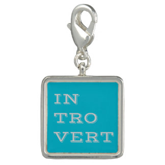 Gray Introvert Charm