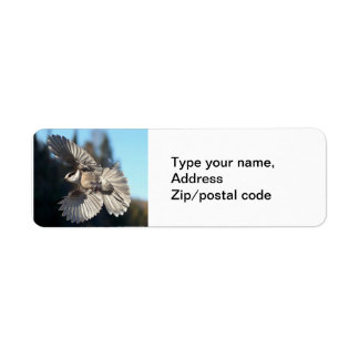 Gray Jay In Flight Return Address Label