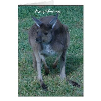 Gray Kangaroo Christmas Card