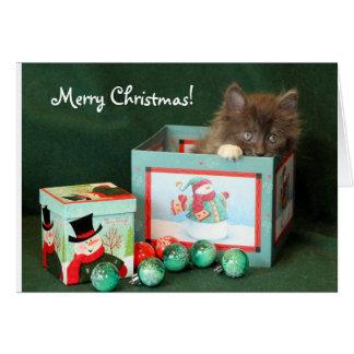 Gray Kitten in Christmas Box Card