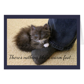Gray Kitten Relaxing on Sock Card
