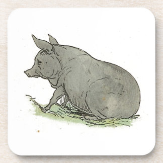 Gray Pig Piggy Children's Book Illustration Beverage Coaster