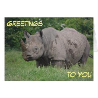 Gray Rhino Greeting Card