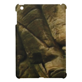 gray rocks of rumble cover for the iPad mini