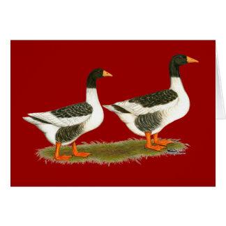 Gray Saddleback Geese Card