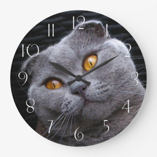 Gray scottish fold cat large clock