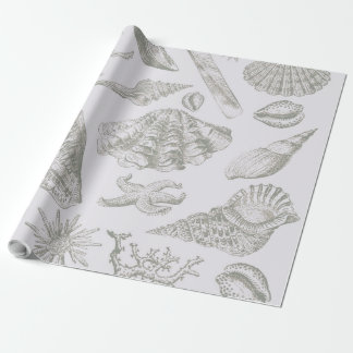 Gray Seashell Art Print Pattern Beachy Wrapping Paper