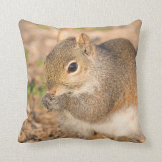 Gray Squirrel eating seeds Throw Pillow