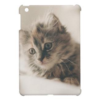 Gray Tabby Kitten Case For The iPad Mini