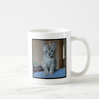 Gray Tabby kitten Coffee Mug