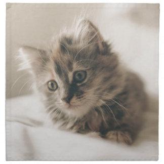 Gray Tabby Kitten Napkin