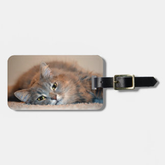 Gray, Tan, White Long-Haired Cat by Shirley Taylor Bag Tag