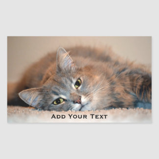 Gray, Tan, White Long-Haired Cat by Shirley Taylor Sticker