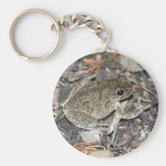 Gray Tree Frog Keychain