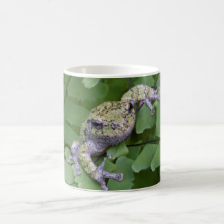 Gray tree frog on fern, Canada Coffee Mug