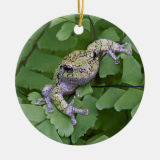 Gray tree frog on fern, Canada Round Ceramic Ornament