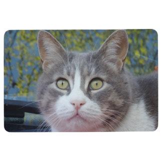 Gray White Cat Floor Mat