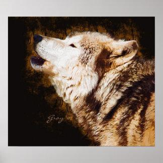 Gray Wolf Baying Poster