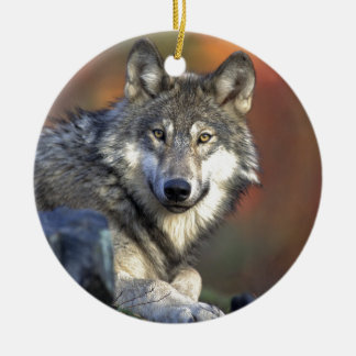Gray wolf round ceramic ornament