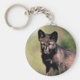 Gray Wolf-summer-(black-phase) cub Keychain