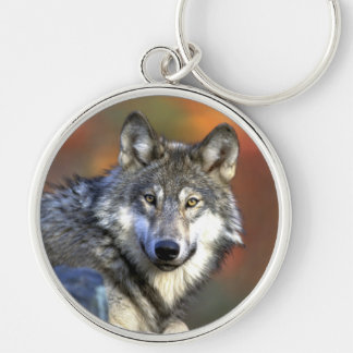 Gray Wolf - Timber Wolf - Red Wolf Series Keychain