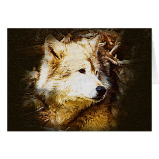 Gray Wolf Watching Card
