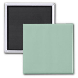 Grayed Jade Square Magnet
