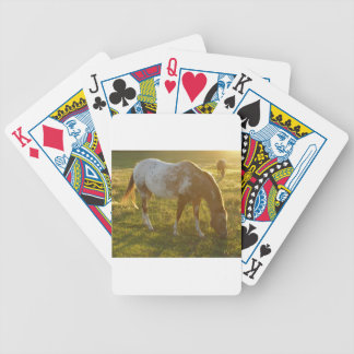 Grazing Appaloosa Horse Bicycle Playing Cards