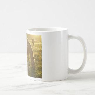 Grazing Appaloosa Horse Coffee Mug