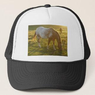 Grazing Appaloosa Horse Trucker Hat