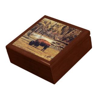 Grazing Buffalo Keepsake Box