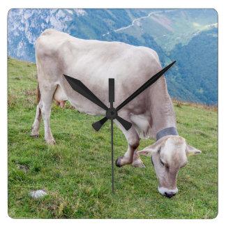 Grazing cow wall clock
