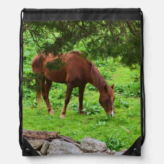 Grazing Horse Backpack