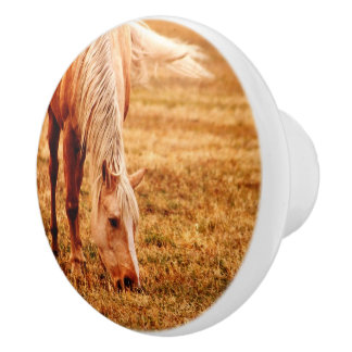 Grazing Horse Ceramic Furniture Knob