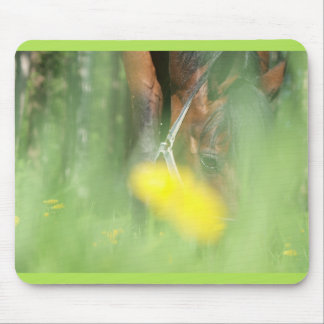 grazing horse mouse pad