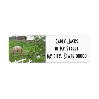 Grazing Horses I Return Address Labels