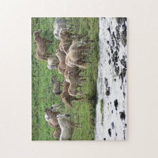 Grazing horses puzzle