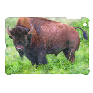 Grazing Plains Buffalo, Bison-lover's Design Cover For The iPad Mini