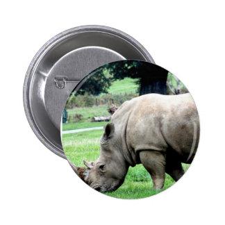 Grazing White Rhino  Button