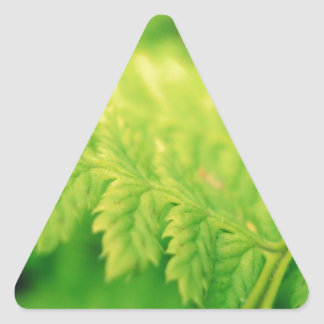 Grean leaf triangle stickers
