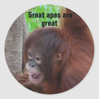 Great Apes are Great Classic Round Sticker