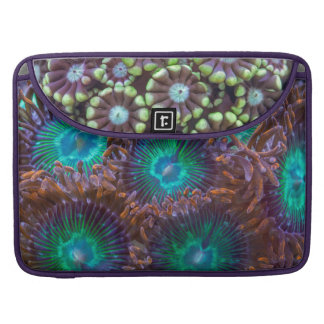 Great Barrier Reef assorted corals Sleeve For MacBooks