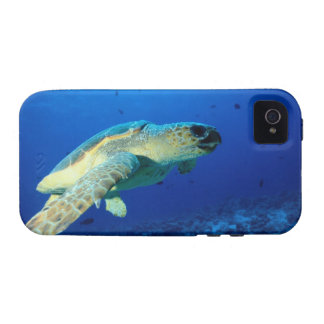 Great Barrier Reef, Australia 2 Vibe iPhone 4 Covers