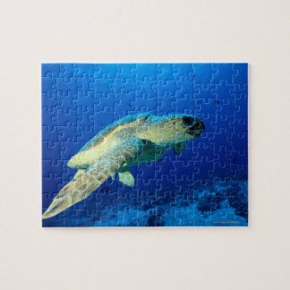 Great Barrier Reef, Australia 2 Jigsaw Puzzle