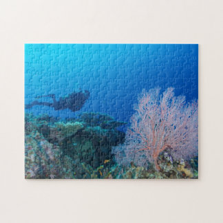 Great Barrier Reef Coral Sea Ocean Puzzles