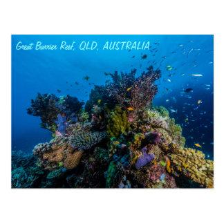 Great Barrier Reef Postcard