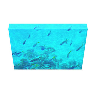 Great Barrier Reef Tropical Fish Canvas Print